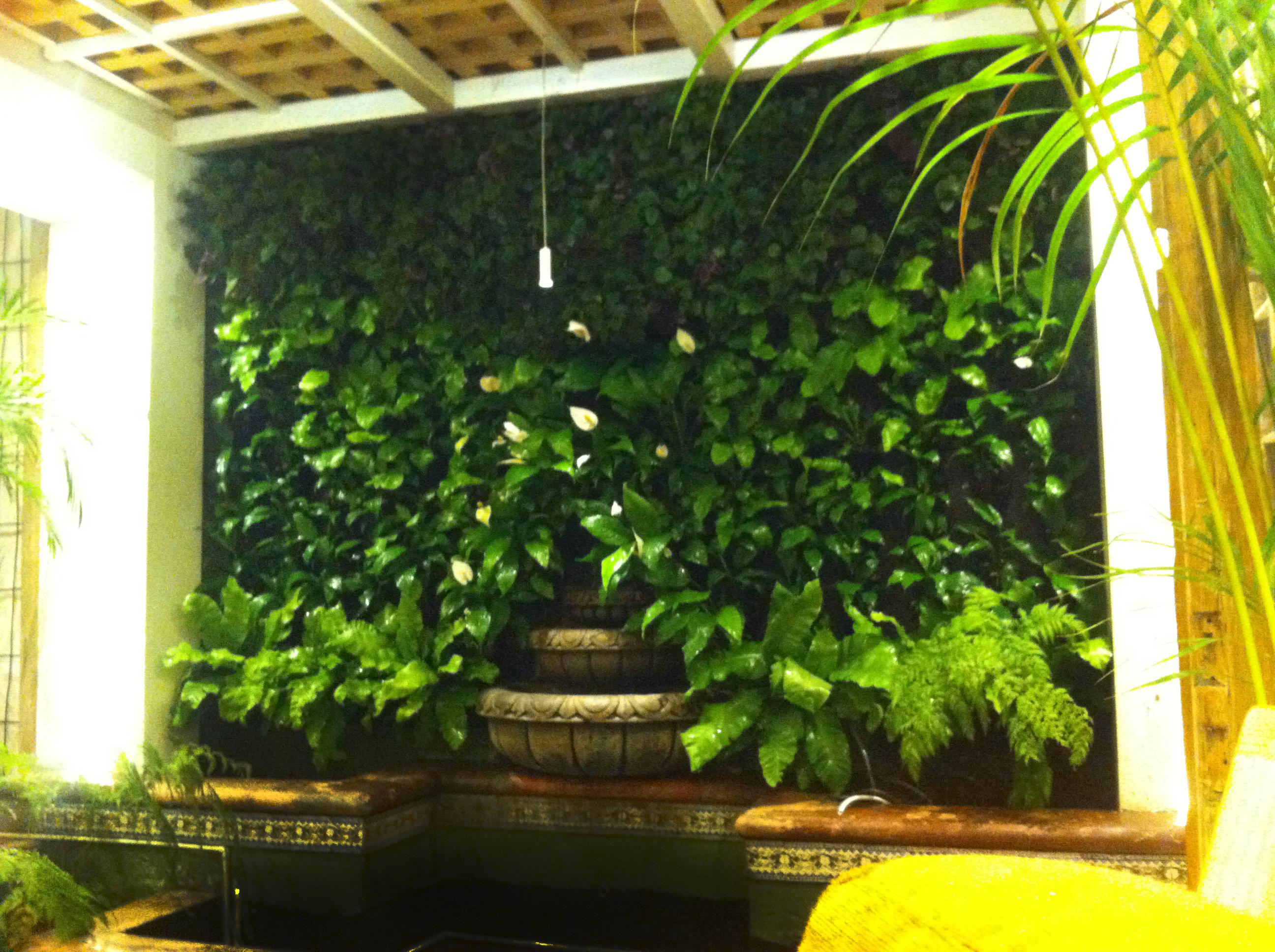 Venta instalaci n y mantenimiento de muros verdes for Diseno de muros verdes