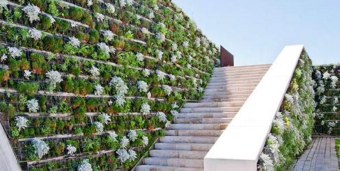 Guia qu son los muros verdes hydro environment - Como hacer un muro verde ...
