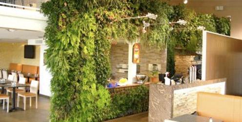 Uia instalaci n de un muro verde hydro environment - Muros decorativos para interiores ...
