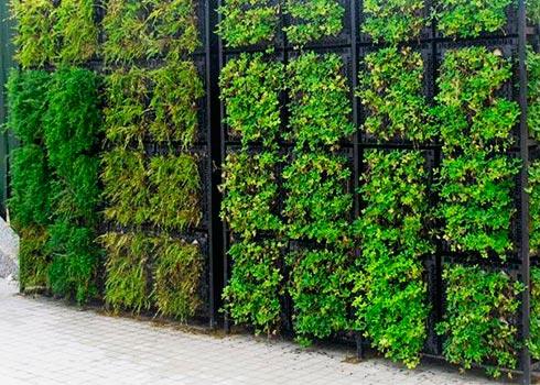 Guia instalaci n de sistema de riego para muro verde for Muros verdes naturales