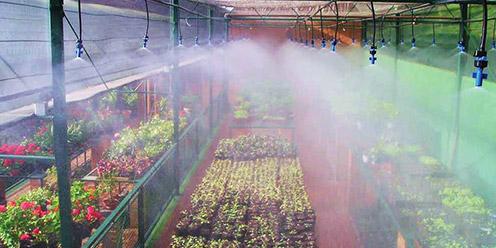 Gu a qu es un fertilizante foliar hydro for Un fertilizzante