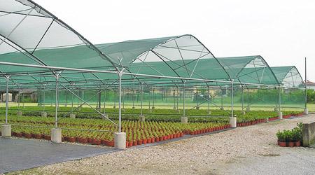 Gu a mallas sombra hydro environment hidroponia for Vivero estructura