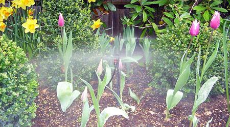 Aprendamos horticultura riego for Instalacion riego automatico jardin