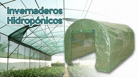 Gu a qu es un invernadero hydro environment for Vivero estructura