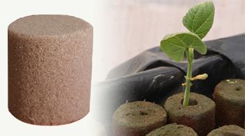 con Forma de Anillo PVC Sistema de riego por Goteo de Agua tama/ño: 50 l Bolsa de riego por Goteo autom/ático para /árbol Mitef Verde