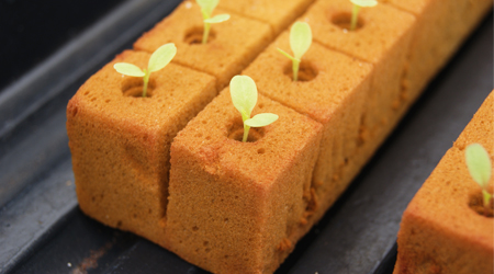 semilleros de espuma agrcola
