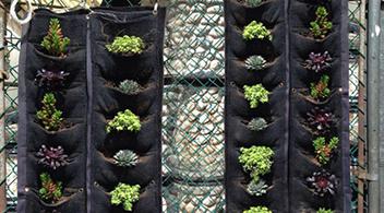 Macetas para muros verdes hydro environment for Tela para muro verde